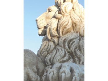 Lion Art.605 hoogte 72 cm