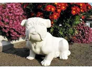 Bulldog Art.609 hoogte 29cm