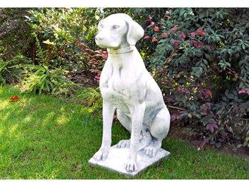 Hond Bracco Art.648 hoogte 73cm