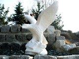 Standbeeld Adelaar kleine (Art. 630)_