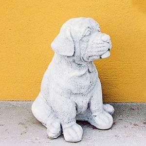 Dierenbeeld Boxer / Hond